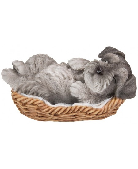Schnauzer Sleeping in Basket Puppy Statue at Majestic Dragonfly, Home Decor, Artwork, Unique Decorations