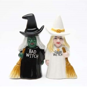 Good Witch Bad Witch Salt and Pepper Shakers Majestic Dragonfly Home Decor, Artwork, Unique Decorations