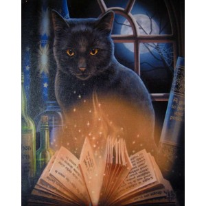 Bewitched Black Cat Canvas Print by Lisa Parker Majestic Dragonfly Home Decor, Artwork, Unique Decorations