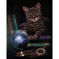 Fortune Teller Cat Canvas Print
