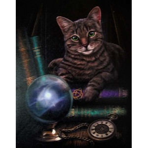Fortune Teller Cat Canvas Print Majestic Dragonfly Home Decor, Artwork, Unique Decorations