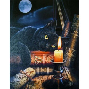 Witching Hour Black Cat Canvas Print Majestic Dragonfly Home Decor, Artwork, Unique Decorations