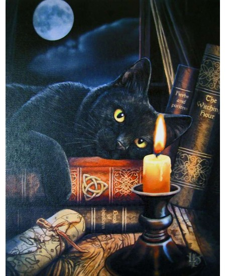 Witching Hour Black Cat Canvas Print at Majestic Dragonfly, Home Decor, Artwork, Unique Decorations